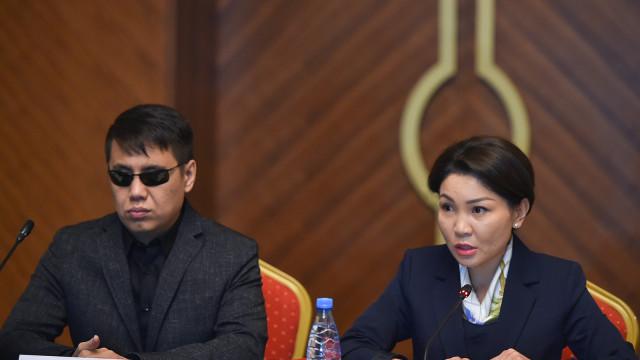 Вице-премьер-министр Эльвира Сурабалдиева: Инклюзивдик коомду уюштуруу максатында «Жеткиликтүү өлкө» программасы иштелип чыгат